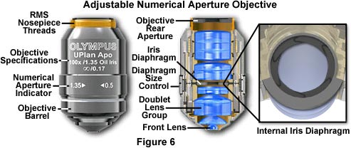 Adjustable Numerical Aperture Objective
