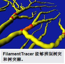 FilamentTrancer