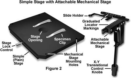simple stage with attachable mechanical stage