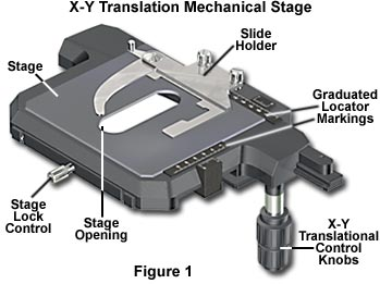 X-Y Translation Mechanical Stage