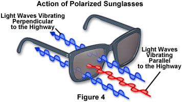 polarized light figure4