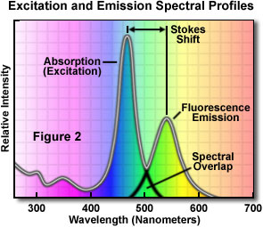 excitation emission figure2