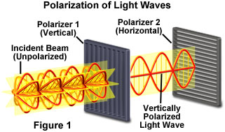 polarized light figure1