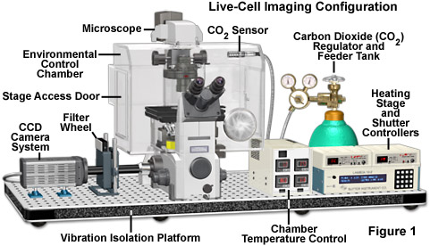 automatic microscope figure1